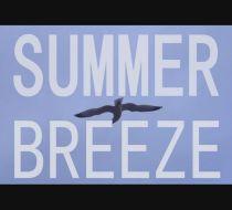 Vacanta de vara este o adevarata institutie, iar fiecare se distreaza asa cum vrea!