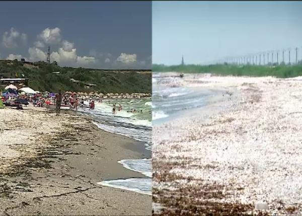Plaja pustie de la Tuzla, invadată de terase, șezlonguri și manele:  Nu mai e sălbatică cum o știam