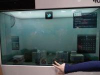 Samsung a inceput sa fabrice ecrane LCD transparente