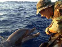 Dupa 50 de ani, delfinii de razboi vor fi inlocuiti de roboti. Tehnologia secreta pregatita de SUA