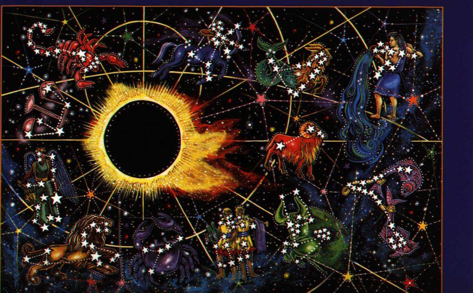Horoscop ,  Cristian Gog  si  salam de biscuiti . Ce cauta romanii pe Internet. VIDEO