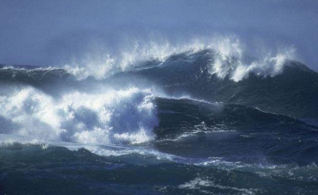 Un univers paralel , asa descriu oamenii de stiinta lumea din adancurile oceanelor