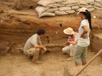 Fosile de la un animal care a trait acum 6 milioane de ani, descoperite in judetul Vaslui