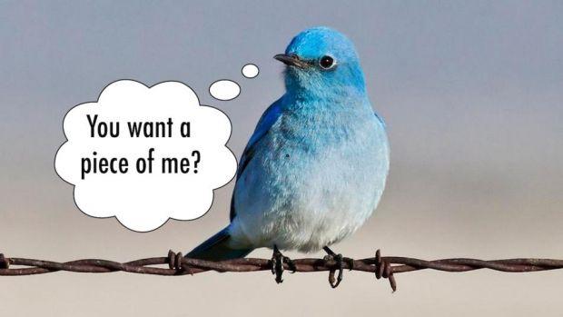 Cel mai tare mesaj postat pe Twitter din 2013 a emotionat 400.000 de oameni