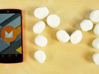 Cati oameni au trecut la Android Marshmallow. Lollipop ramane abia pe locul 3