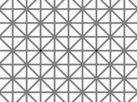 O iluzie optica a indus in eroare peste 2 milioane de oameni! Cate puncte negre sunt in imagine