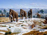 Motivul incredibil pentru care savantii rusi vor sa cloneze specii disparute de mii de ani