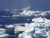 Polul Nord se incalzeste intr-un ritm fara precedent! Avertismentul cercetatorilor