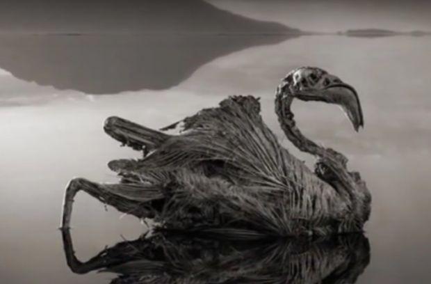 Misterul lacului Natron! Apa care transforma orice fiinta in stana de piatra