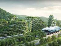 China construieste primul oras-padure din lume! Cladirile de aici vor reduce nivelul de poluare
