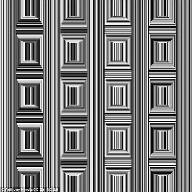 Cate cercuri vezi in imagine? Iluzia optica devenita viral pe Internet