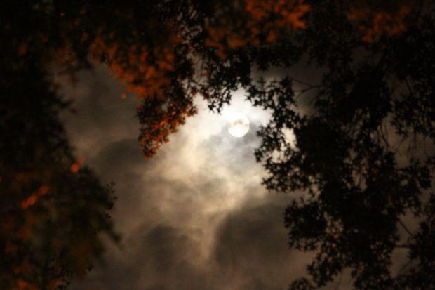 Echinoctiul de toamna: toamna astronomica incepe vineri, 22 septembrie, la ora 23.01