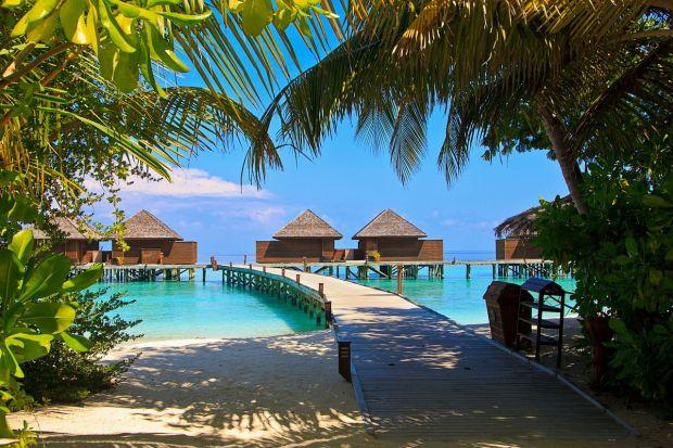 Incalzirea globala risca sa transforme intr-un adevarat infern insulele care sunt acum un paradis turistic