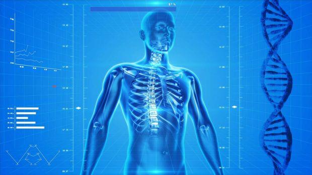 Descoperire surprinzătoare despre corpul uman. Pentru prima dată, cercetătorii au observat acest detaliu