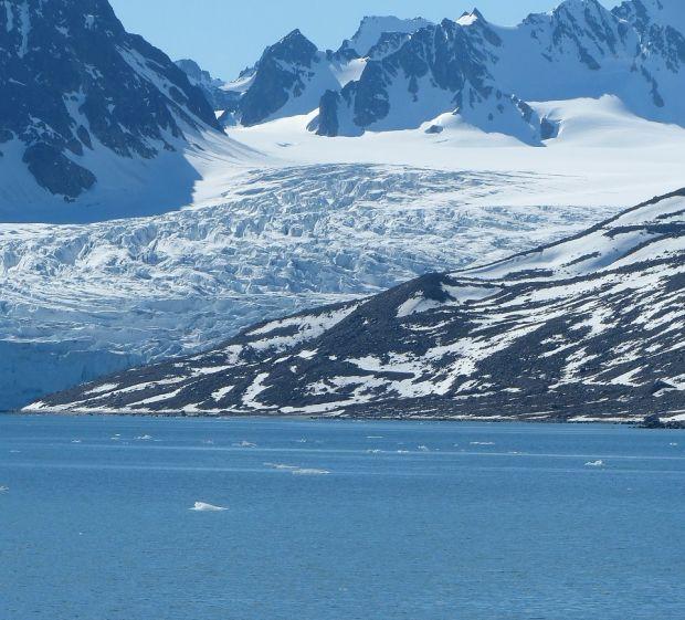 Topirea gheții de la Polul Nord a scos la lumină forme de viață îngropate de 40.000 de ani