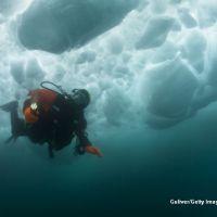 Ice diving, heli skiing sau speed flying. Topul sporturilor extreme la moda
