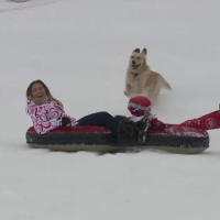 Trebuie sa ne reobisnuim cu schiul pe zapada . COD ROSU de distractie la munte, unde turistii au profitat de zapada intarziata