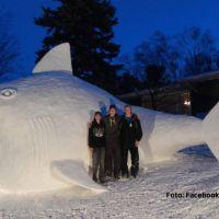 Ce faci cand ai prea mult omat in curte: un rechin gigantic de zapada